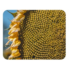 Sunflower Bright Close Up Color Disk Florets Double Sided Flano Blanket (large)