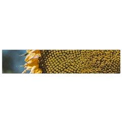Sunflower Bright Close Up Color Disk Florets Flano Scarf (Small)