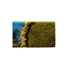 Sunflower Bright Close Up Color Disk Florets Cosmetic Bag (xs)
