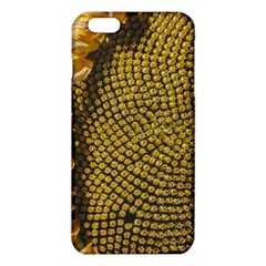 Sunflower Bright Close Up Color Disk Florets Iphone 6 Plus/6s Plus Tpu Case