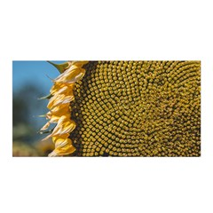 Sunflower Bright Close Up Color Disk Florets Satin Wrap
