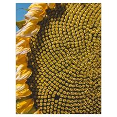 Sunflower Bright Close Up Color Disk Florets Drawstring Bag (large)