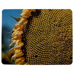 Sunflower Bright Close Up Color Disk Florets Jigsaw Puzzle Photo Stand (rectangular)