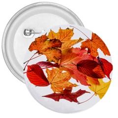 Autumn Leaves Leaf Transparent 3  Buttons