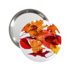 Autumn Leaves Leaf Transparent 2 25  Handbag Mirrors