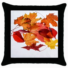 Autumn Leaves Leaf Transparent Throw Pillow Case (black)