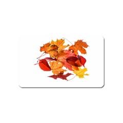 Autumn Leaves Leaf Transparent Magnet (Name Card)
