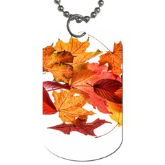 Autumn Leaves Leaf Transparent Dog Tag (two Sides)
