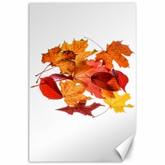 Autumn Leaves Leaf Transparent Canvas 24  X 36