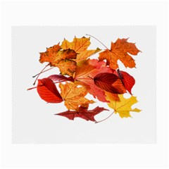 Autumn Leaves Leaf Transparent Small Glasses Cloth (2 Side)