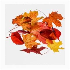 Autumn Leaves Leaf Transparent Medium Glasses Cloth