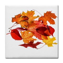 Autumn Leaves Leaf Transparent Face Towel