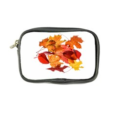 Autumn Leaves Leaf Transparent Coin Purse