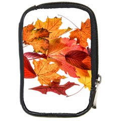Autumn Leaves Leaf Transparent Compact Camera Cases