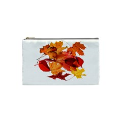 Autumn Leaves Leaf Transparent Cosmetic Bag (small)