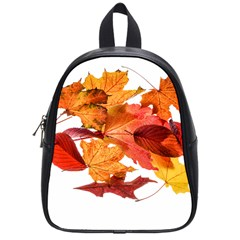 Autumn Leaves Leaf Transparent School Bags (small)