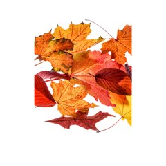 Autumn Leaves Leaf Transparent Shower Curtain 48  X 72  (small)