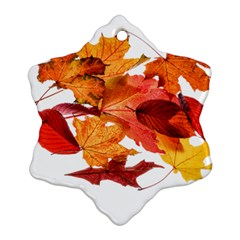 Autumn Leaves Leaf Transparent Ornament (snowflake)