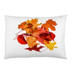 Autumn Leaves Leaf Transparent Pillow Case (two Sides)