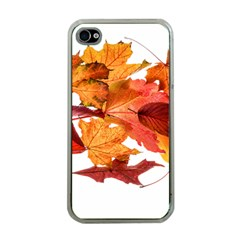 Autumn Leaves Leaf Transparent Apple Iphone 4 Case (clear)