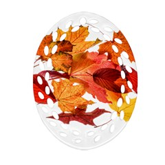 Autumn Leaves Leaf Transparent Oval Filigree Ornament (two Sides)