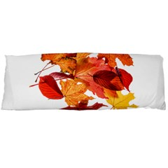 Autumn Leaves Leaf Transparent Body Pillow Case Dakimakura (two Sides)