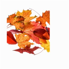Autumn Leaves Leaf Transparent Small Garden Flag (two Sides)