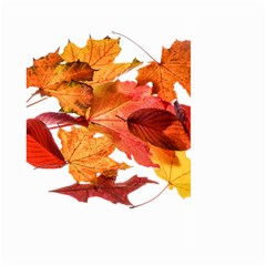 Autumn Leaves Leaf Transparent Large Garden Flag (two Sides)
