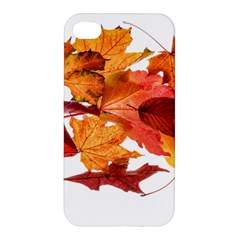 Autumn Leaves Leaf Transparent Apple Iphone 4/4s Premium Hardshell Case