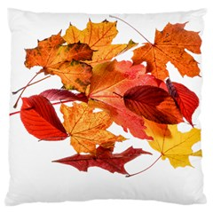 Autumn Leaves Leaf Transparent Large Cushion Case (one Side)
