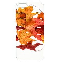 Autumn Leaves Leaf Transparent Apple Iphone 5 Hardshell Case With Stand
