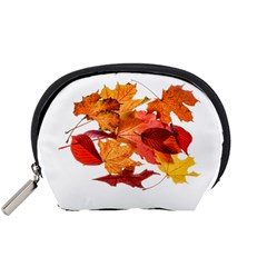 Autumn Leaves Leaf Transparent Accessory Pouches (small)