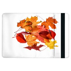 Autumn Leaves Leaf Transparent Ipad Air Flip