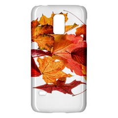Autumn Leaves Leaf Transparent Galaxy S5 Mini