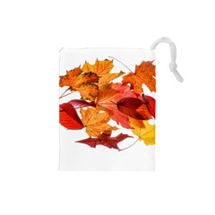 Autumn Leaves Leaf Transparent Drawstring Pouches (small)