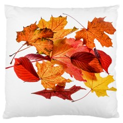 Autumn Leaves Leaf Transparent Large Flano Cushion Case (two Sides)