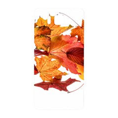 Autumn Leaves Leaf Transparent Samsung Galaxy Alpha Hardshell Back Case