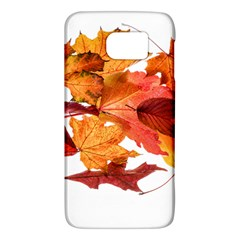 Autumn Leaves Leaf Transparent Galaxy S6