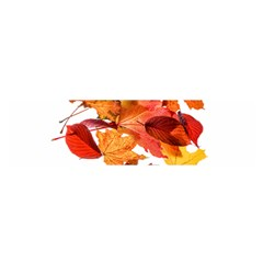 Autumn Leaves Leaf Transparent Satin Scarf (oblong)