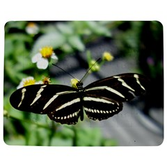 Butterfly #22 Jigsaw Puzzle Photo Stand (Rectangular)