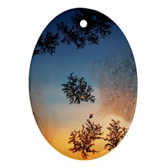 Hardest Frost Winter Cold Frozen Ornament (oval)