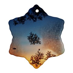 Hardest Frost Winter Cold Frozen Snowflake Ornament (two Sides)