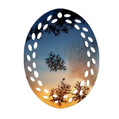 Hardest Frost Winter Cold Frozen Oval Filigree Ornament (two Sides)