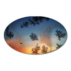 Hardest Frost Winter Cold Frozen Oval Magnet
