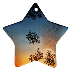 Hardest Frost Winter Cold Frozen Star Ornament (two Sides)