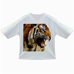 Royal Tiger National Park Infant/toddler T Shirts