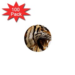 Royal Tiger National Park 1  Mini Buttons (100 pack)