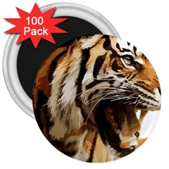 Royal Tiger National Park 3  Magnets (100 Pack)