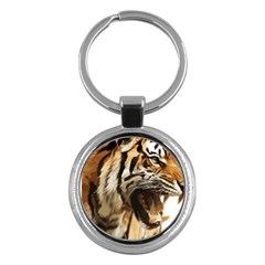 Royal Tiger National Park Key Chains (round)
