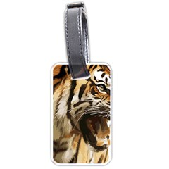 Royal Tiger National Park Luggage Tags (two Sides)
